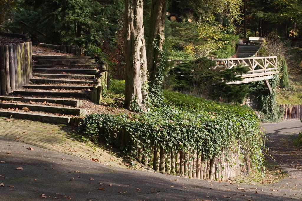 Personeelsuitje Apeldoorn Park