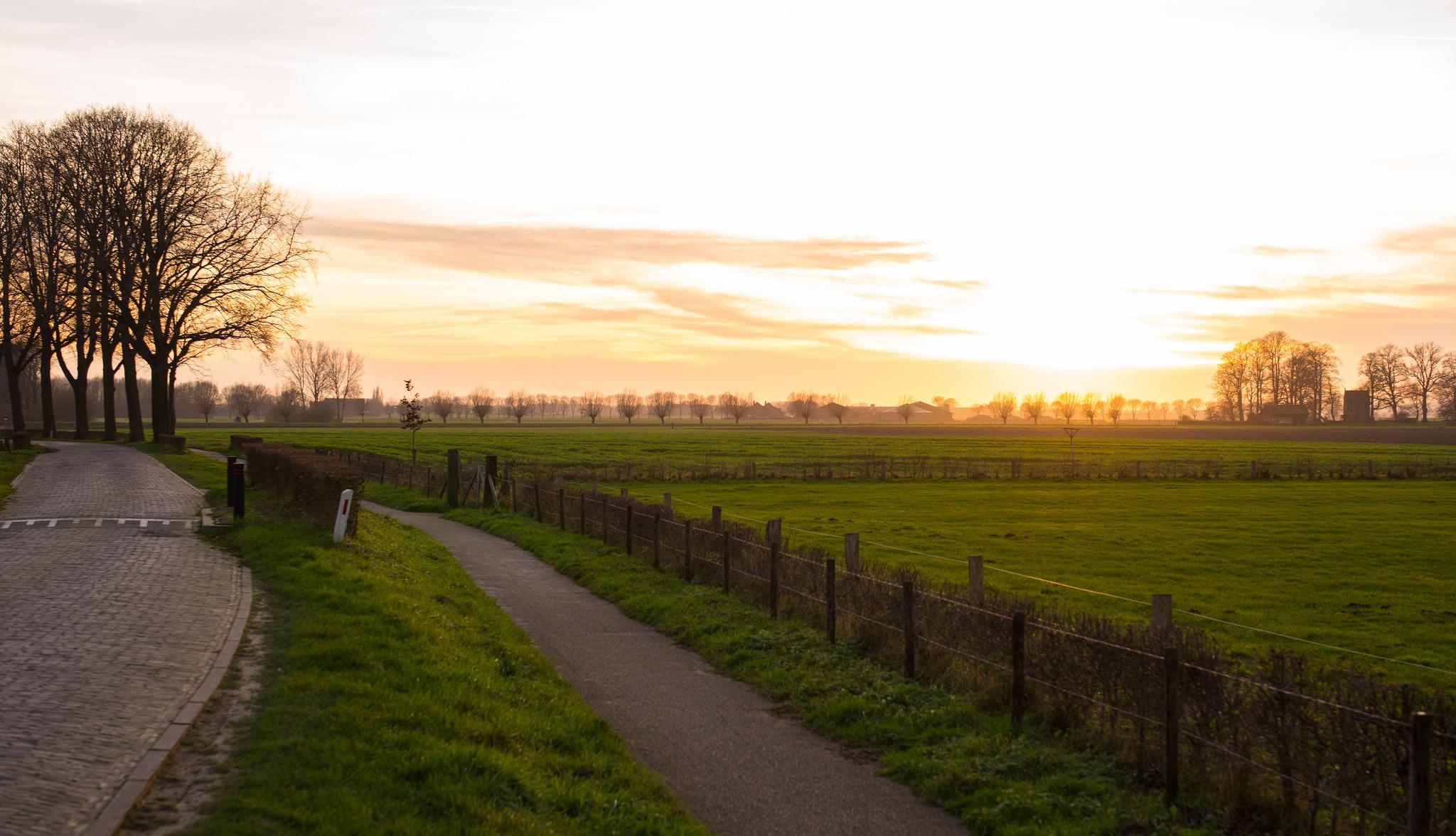 Teambuilding Gelderland Natuur